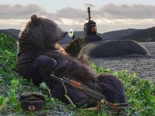 Не будите спящего медведя. Ему хорошо, он чувствует свою правоту