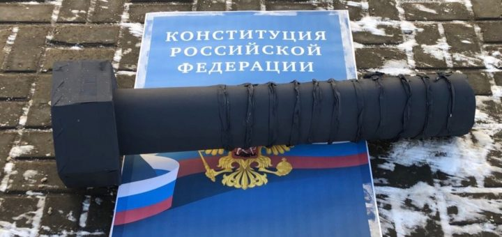Активистка «Открытой России» была наказана за пикет в день Конституции