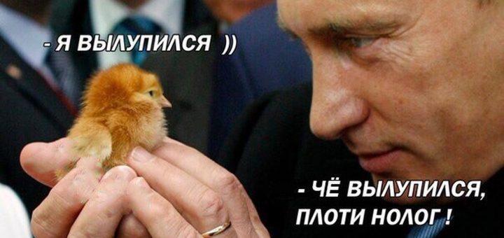Россиян ждёт порция новых налогов