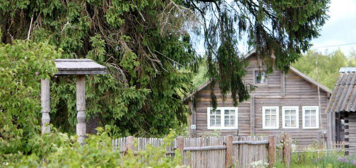Жители Кинермы просят Никиту Михалкова не поджигать деревню