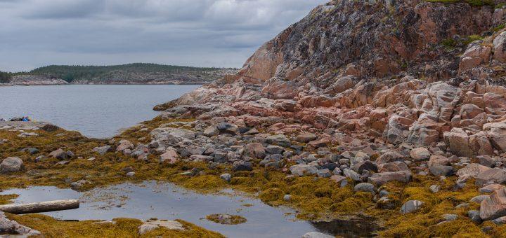 В Белом море заметили танкер для сбора радиоактивных отходов.